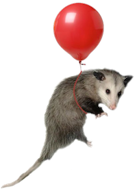 The possum is Eleventy's mascot